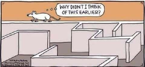 topo-labirinto
